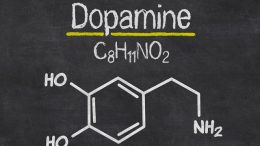 Dopamin Nedir? Dopamin Doğal Yollarla Nasıl Arttırılır?
